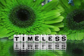 Timeless text message with green flowers — Stock Photo