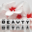 Beauty text with red flowers — Stock Photo #47031051
