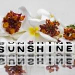 Sunshine — Stock Photo #47046681