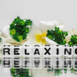 Relaxing with green theme — Stock Photo #47046827