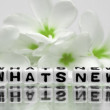 Whats new text with green flowers — Stockfoto #47047365