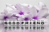 Good friend with pink flowers — Stock Photo