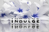 Indulge blue theme — Stock Photo