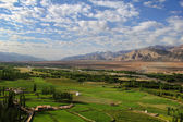 Spituk valley, Ladakh range, Northern India — Stock Photo