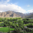 Stock Photo: Spituk valley in Ladakh, Northern India