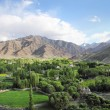 Spituk valley in Ladakh, Northern India - Stock Photo