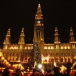 Christmas marketplace near City hall, Vienna — Stock Photo #21561869