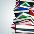 Pile of books. — Stock Photo #25081435