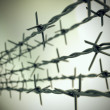 Perspective view of new barbed wire. - ストック写真