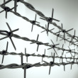 Stock Photo: Perspective view of new barbed wire.