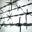 Perspective view of new barbed wire. — Stok fotoğraf