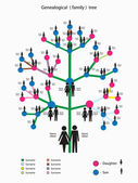 Vector illustration with a picture of the genealogical family tree — Stock Vector