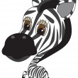 Vector cartooon Illustration of cute Zebra — Stock Vector