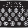 Vector set silver snowflakes — Stock Vector