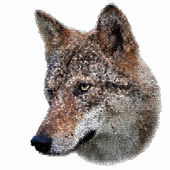The head of a young european wolf female. Side face portrait of a forest dangerous beast, Canis lupus lupus, isolated on white background. Beauty of the wildlife. Amazing vector image in mosaic style. — Stock Vector