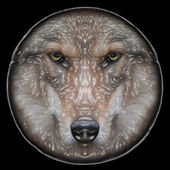 Eye contact with a severe wolf female on round plastic mask. Menacing expression of the european wolf, very beautiful animal and extremely dangerous beast. Amazing vector image with the polish shine. — Stock Vector