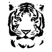 Face of a white bengal tiger, isolated on white background. Amazing mask of the biggest cat. Wild beauty of the most dangerous and mighty beast of the world. Black and white vector image. — Stock Vector