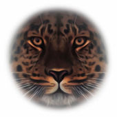 Face of an Amur leopard, looking in your eyes, the most beautiful animal and very dangerous beast. Amazing mask of the big cat, isolated on white background. Vector image in oil painting style. — Stock Vector