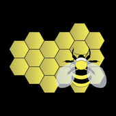 Bee on honeycomb — Stock Vector
