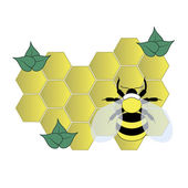 Bee on the honey cells — Stock Vector