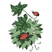 Vector beetles crawling on leaves — Stock Vector