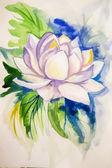 абстрактная акварель краски красивую картинку лотоса — Стоковое фото