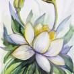 Beautiful graphic illustration of a lotus — Stock Photo
