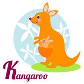 KangarooL — Stock Vector