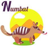 NumbatL — Stock Vector