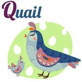 QuailLetter — Stock Vector