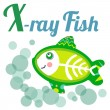 XrayFish — Stockvektor  #37662621