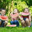 Happy smiling children eating fruits in park — Stock Photo #24339219