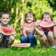 Happy smiling children eating fruits in park — Stock Photo #24339299