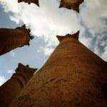 Columns from Roman Temple of Artemis at Jerash, Jordan — Stock Photo #21256667