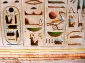 Antichi geroglifici egitto scolpite nella pietra — Foto Stock
