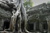Angkor wat temples in Cambodia — Stock Photo
