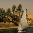 Постер, плакат: Egypt The Nile at Aswan
