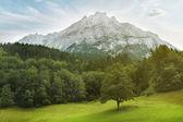 Mountain Landscape Panorama. Switzerland — Stock Photo