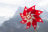 Swiss pinwheel. — Stock Photo