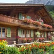 Grindelwald village in Switzerland — Stock Photo #33330627