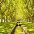 Park from Zaragoza, Labordeta — Stock Photo