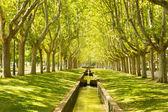 Park from Zaragoza, Labordeta — Stock Photo
