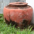 Earthern ware jar with lid — Stock Photo #31581105