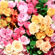 Flower background — Stock Photo #31584817
