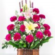 Stock Photo: Basket of Carnation and lily