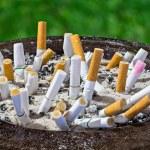 Cigarettes butt in ashtray — Stock Photo #31663921