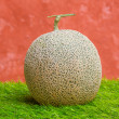 Stock Photo: Rock melon