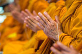 Buddhist monks chanting — Stock Photo