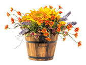 Bouquet of sun flower — Stock Photo