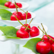 Cherry imitation fruit — Stock Photo
